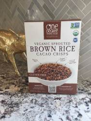 one degree sprouted brown rice chocolate crispy treats